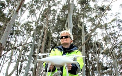 Using Drones for Agriculture in South Africa