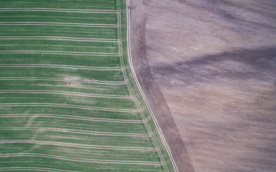 How Recent Drone Advances Have Impacted Agriculture